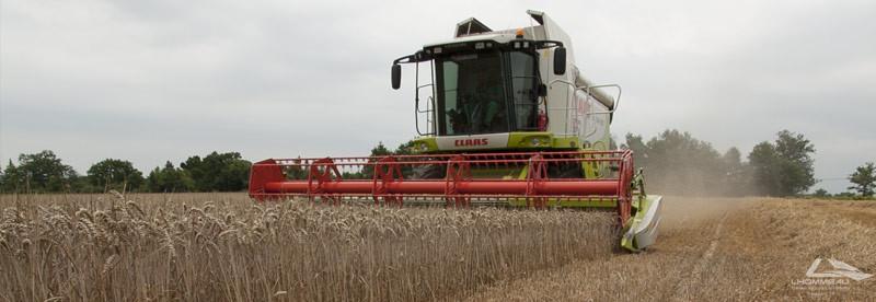 recolte blé -lhommeau services
