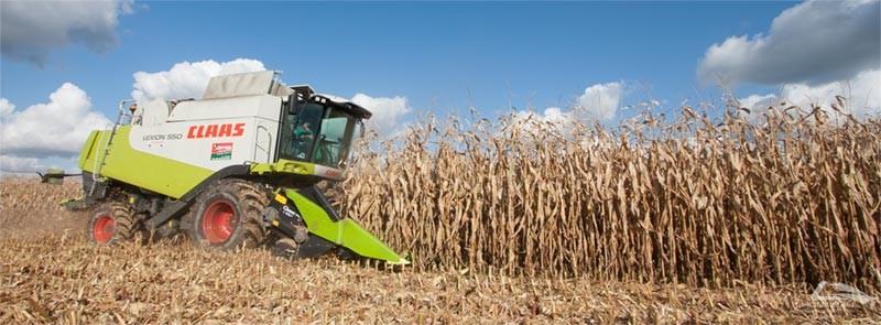 Recolte maïs - Lhommeau services